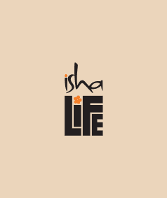Pancha Bhoota Eye Pillow
